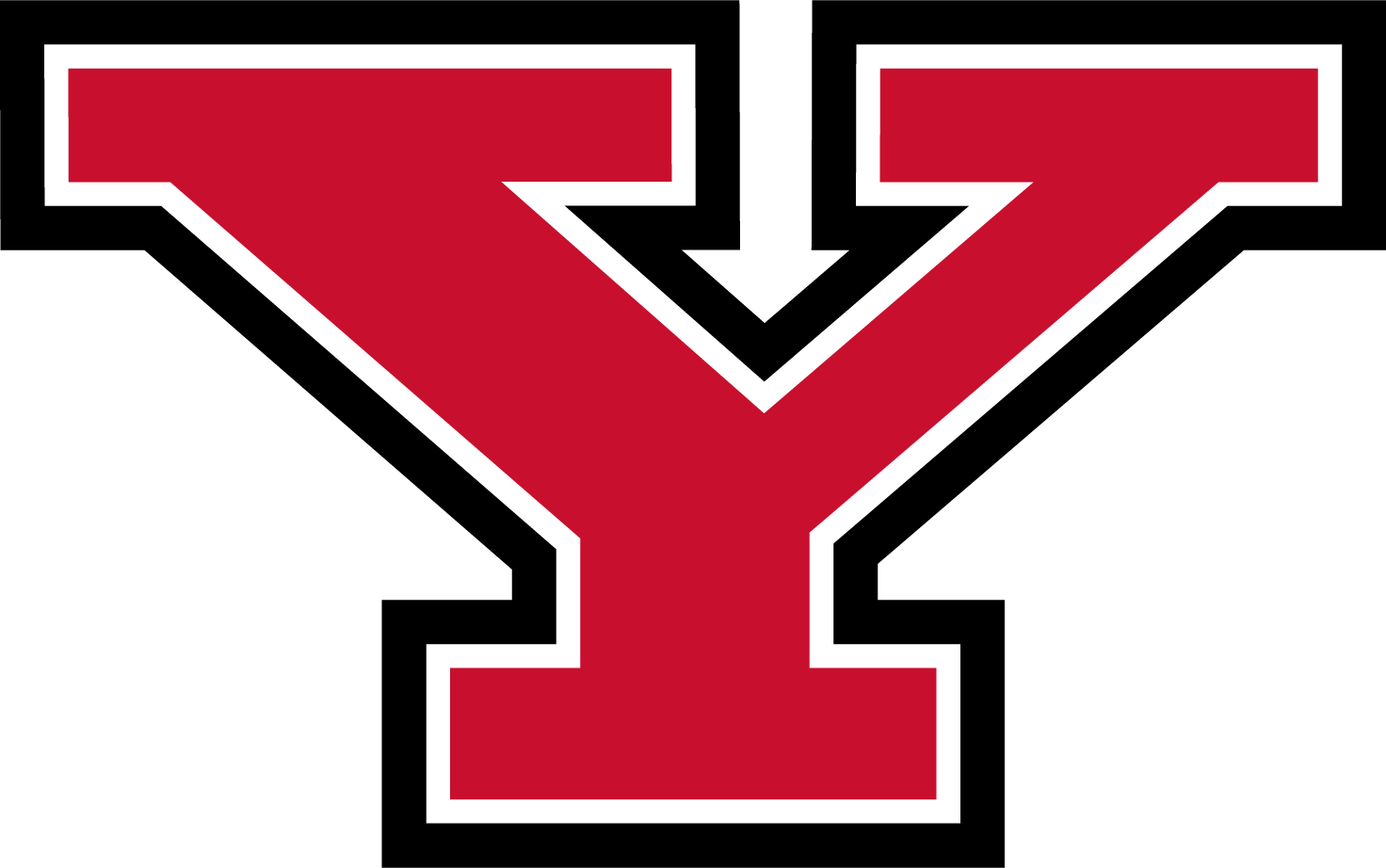 Youngstown State Penguins Logo png