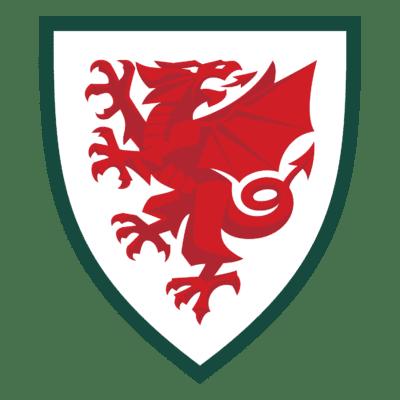Wales National Football Team Logo png